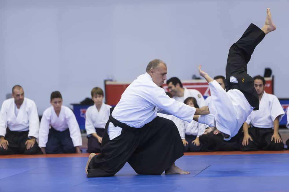 Japanese traditional martial arts aikido