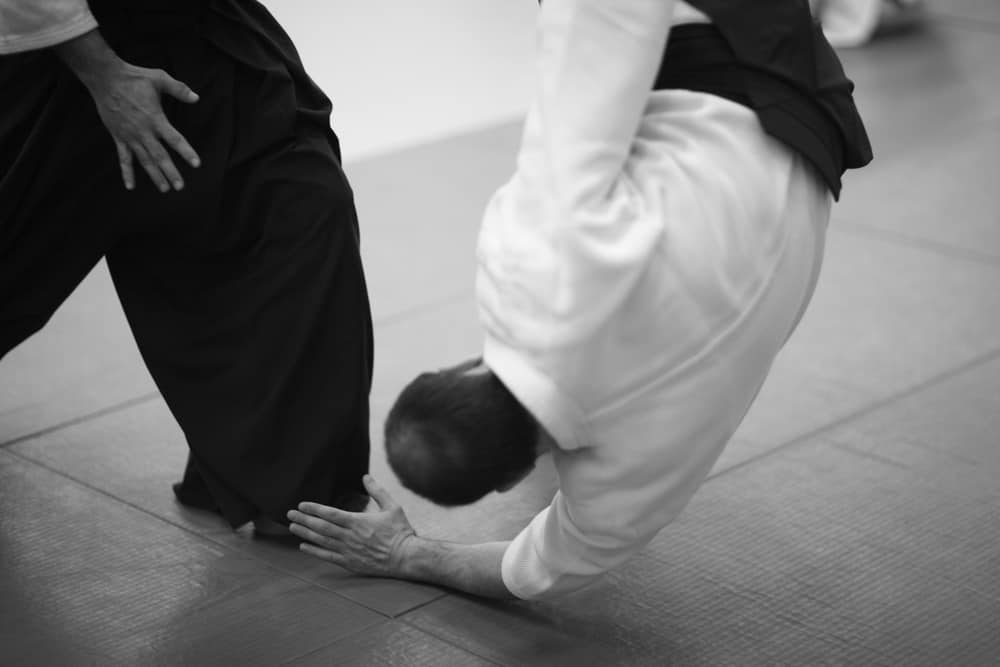 Throwing technique in aikido monochrome