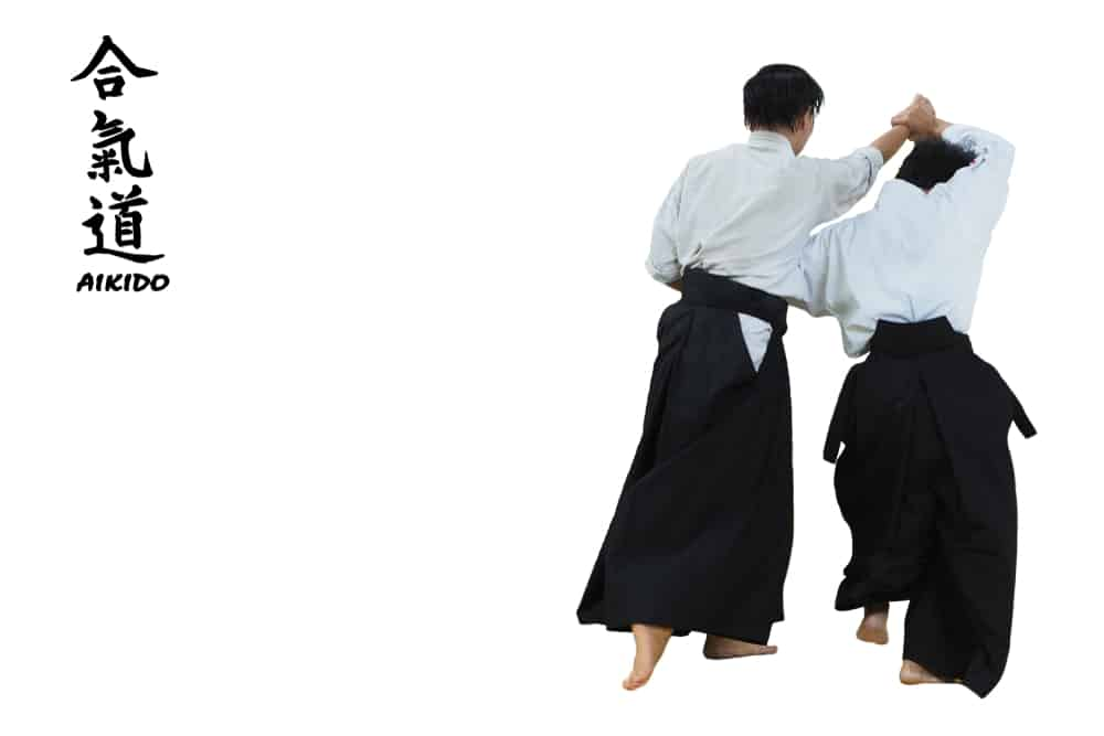 Two Aikido Martial Artists in Traditional Costume
